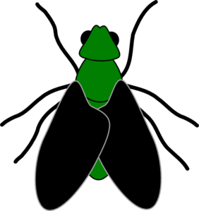 Green Fly Black Clip Art