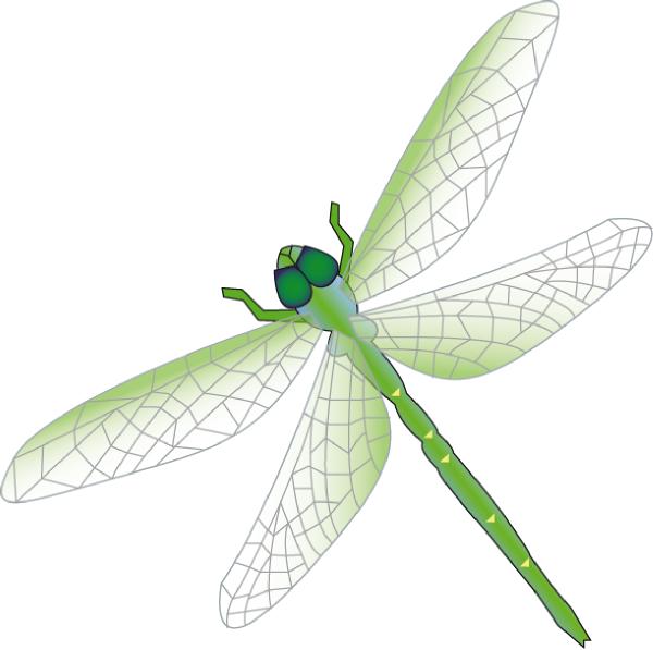 Dragon Fly Clip Art at Clker.com - vector clip art online, royalty ...