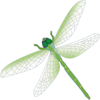 Dragon Fly Clip Art