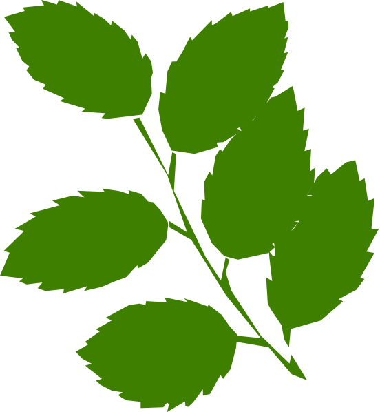 free clipart green leaf - photo #12