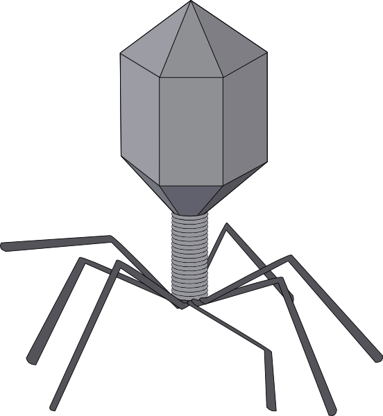 Virus clip art - vector clip art online, royalty free & public domain