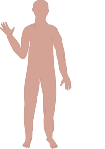 Male Body Three Clip Art
