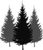 3pinetrees3 Clip Art