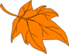 Orange Autumn Leaf Clip Art