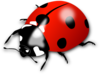 Red Lady Bug Clip Art