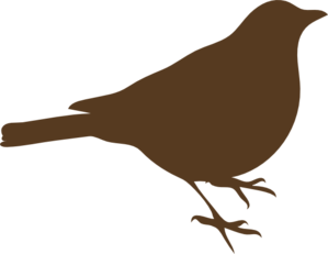 Brown Song Bird Clip Art