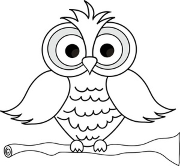 Wise Owl With Big Eyes On A Tree Limb In Black And White ...