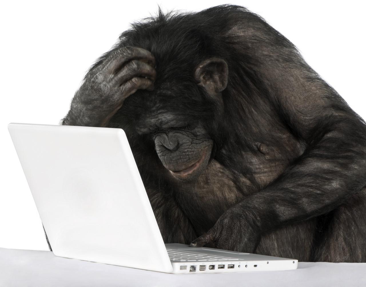 poster computer monkey