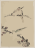 [three Birds Perched On Branches, One With Blossoms] Clip Art
