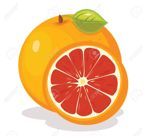 Orange And Grapefruit Clipart | Free Images at Clker.com - vector clip art online, royalty free & public domain