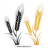 Shock Of Wheat Clipart Image
