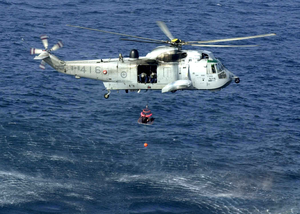 Sar Swimmer Training Image