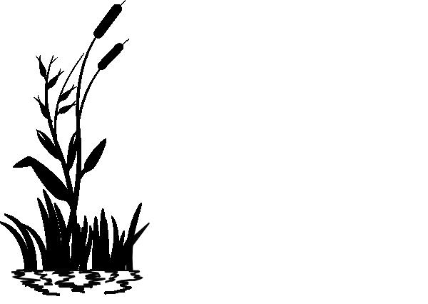cattail clip art at clker com vector clip art online royalty free rh clker com cattail clipart black and white cattail clip art free stencils