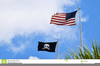 Pirate Flag Clipart Waving Image