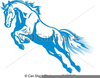 Year Of The Horse Clipart Image