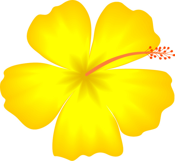 Yellow Hibiscus Hawaii... Yellow Hibiscus Clip Art