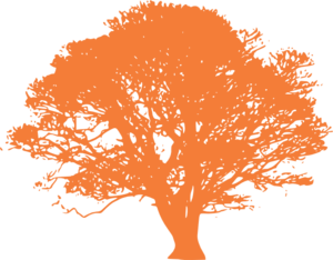 Tree, Orange Silhouette, White Background 2 Clip Art
