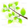 Green Tree Branch Icon Image