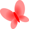 Red Pink Butterfly Md Image