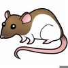 Rats Clipart Free Image