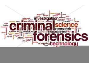 Forensics Clipart Free Images At Clker Com Vector Clip Art Online Royalty Free Public Domain