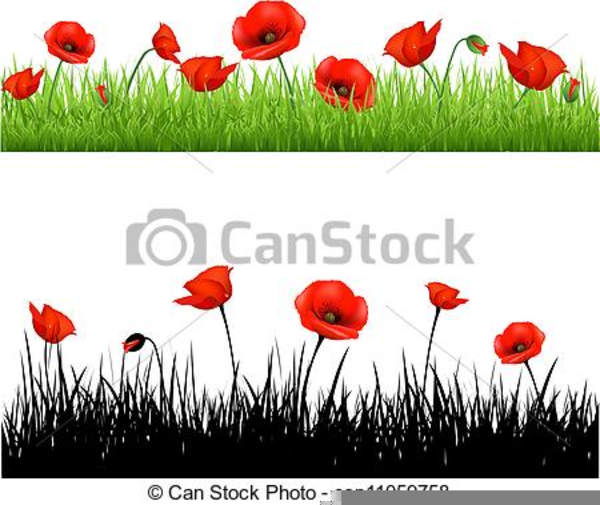 Anzac Poppy Clipart Free Images At Clker Com Vector Clip Art Online Royalty Free Public Domain