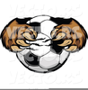 Grinning Tiger Clipart Image