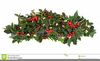 Christmas Ivy Clipart Image