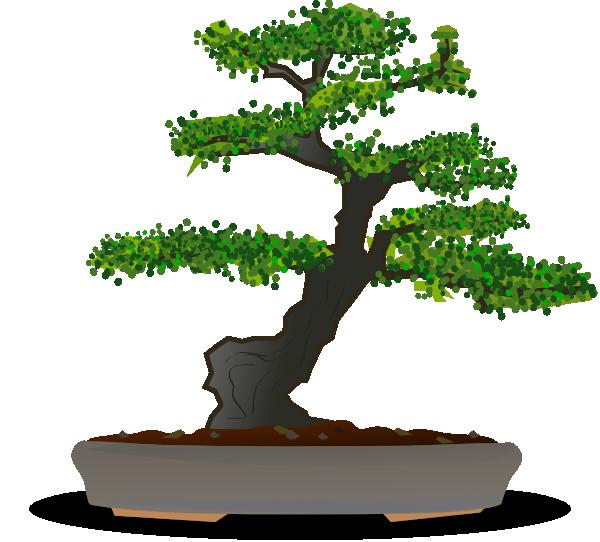 bonsai clip art at vector clip art online royalty free public domain. Black Bedroom Furniture Sets. Home Design Ideas