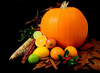 Still Life Picture Of A Pumpkin And Other Various Fruit On Black Background Image
