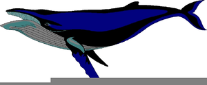 Clipart Cartoon Whale Image