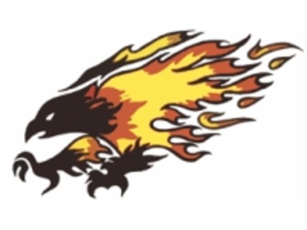Chaparral Firebird   Free Images at Clker.com - vector ...