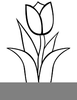 Tulips Clipart Black And White Image