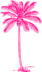Coconut Palm Tree Hot Pink Clip Art