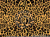 Cheetah Pattern Clipart Image