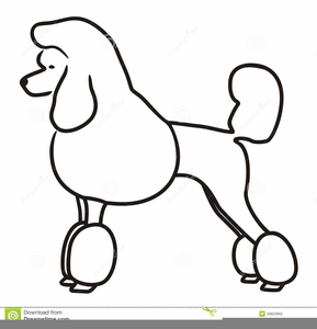 french poodle clipart free free images at clker com vector clip rh clker com Standard Poodle Silhouette free poodle clip art image