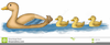 Duck With Ducklings Clipart Image