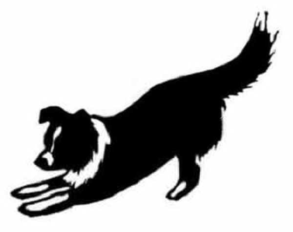 border collie fe clipart free images at clker com vector clip rh clker com border collie clipart outline cartoon border collie clipart