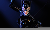 Annette Bening Catwoman Image
