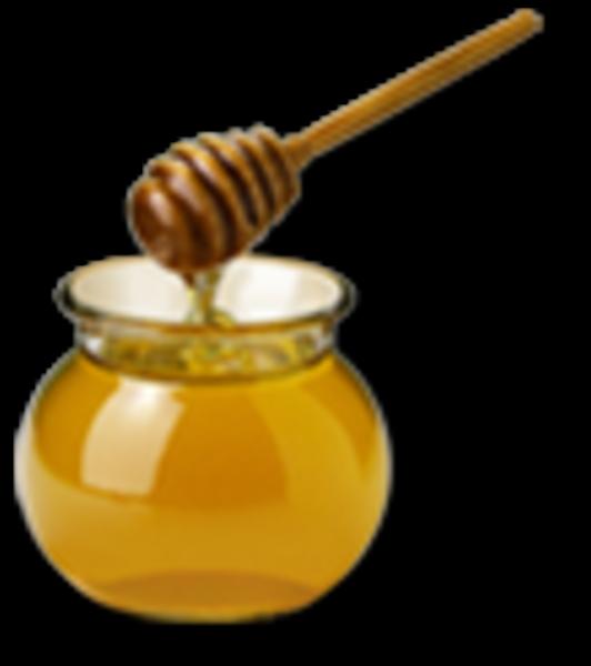 Honey   Free Images at Clker.com - vector clip art online ...
