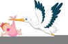 Free Stork With Baby Girl Clipart Image
