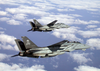 Two F-14 Tomcats Of Fighter Squadron One Zero Three (vf-103) Image