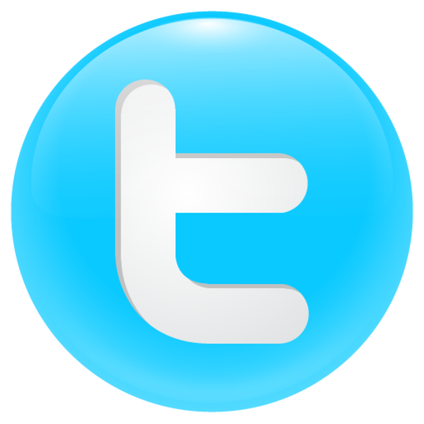 twitter circle icon vector