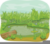 Wetland Clipart Image
