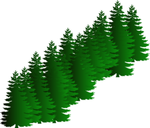 Evergreen Cluster Clip Art