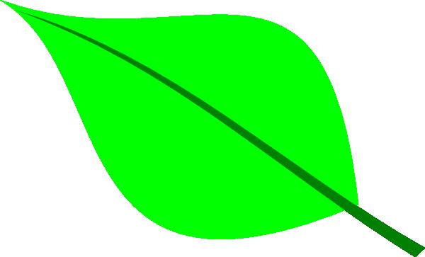 Green Leaf Clip Art At Clker