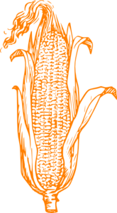 Orange Corn Clip Art