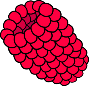 Red Raspberry Clip Art