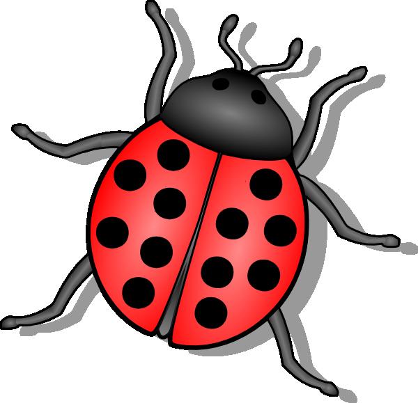 lady bug clip art at clker com vector clip art online cute bug clipart border free cute bug clipart
