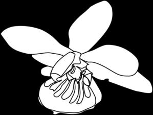 Orchid Clip Art at Clker.com - vector clip art online ...